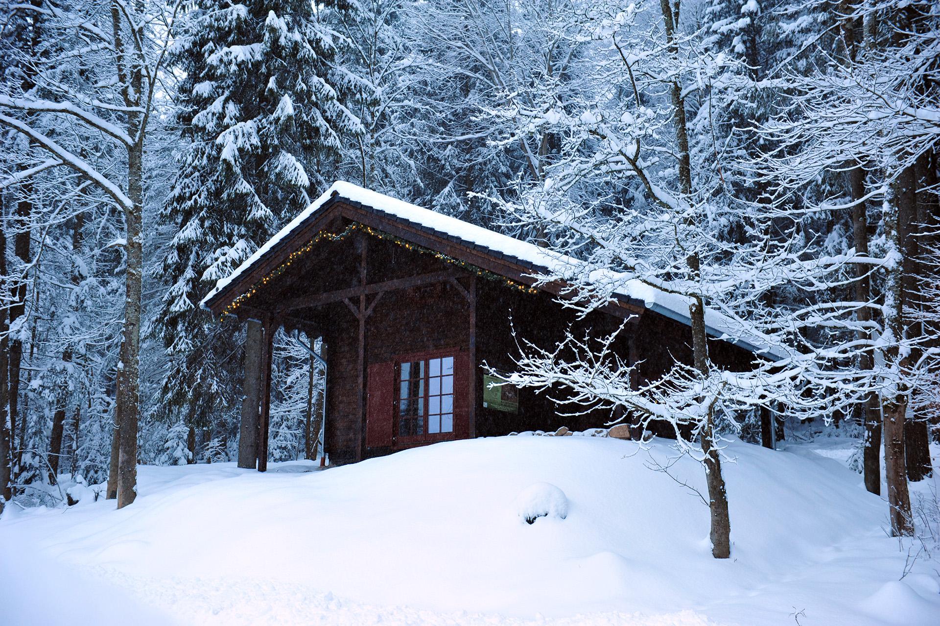 Blockhaus-Bodefall-Außenansicht-Blockhaus-im-Winter