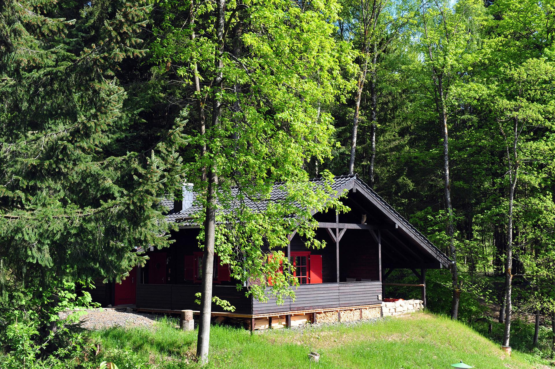 Blockhaus-Bodefall-Außenansicht-Blockhaus-versteckt-im-Wald