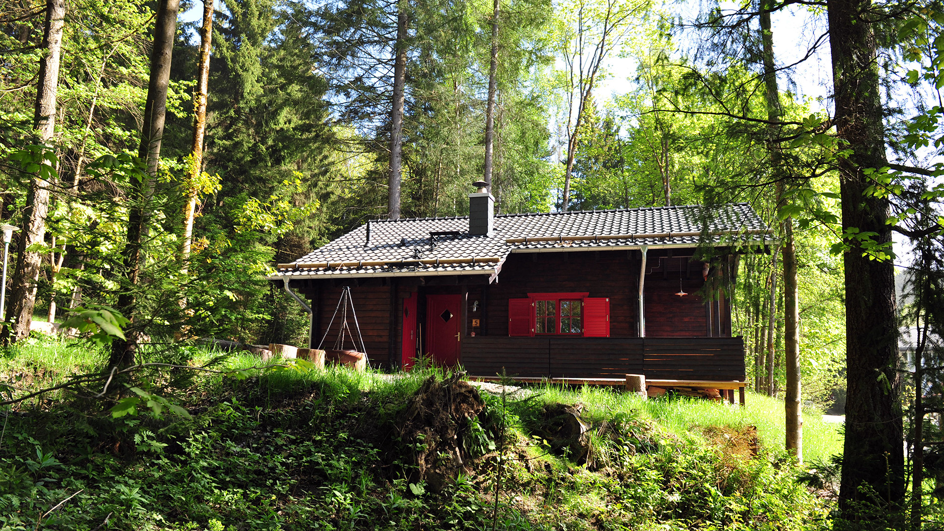 Blockhaus-Bodefall-Sommer-Blockhaus-im-Wald