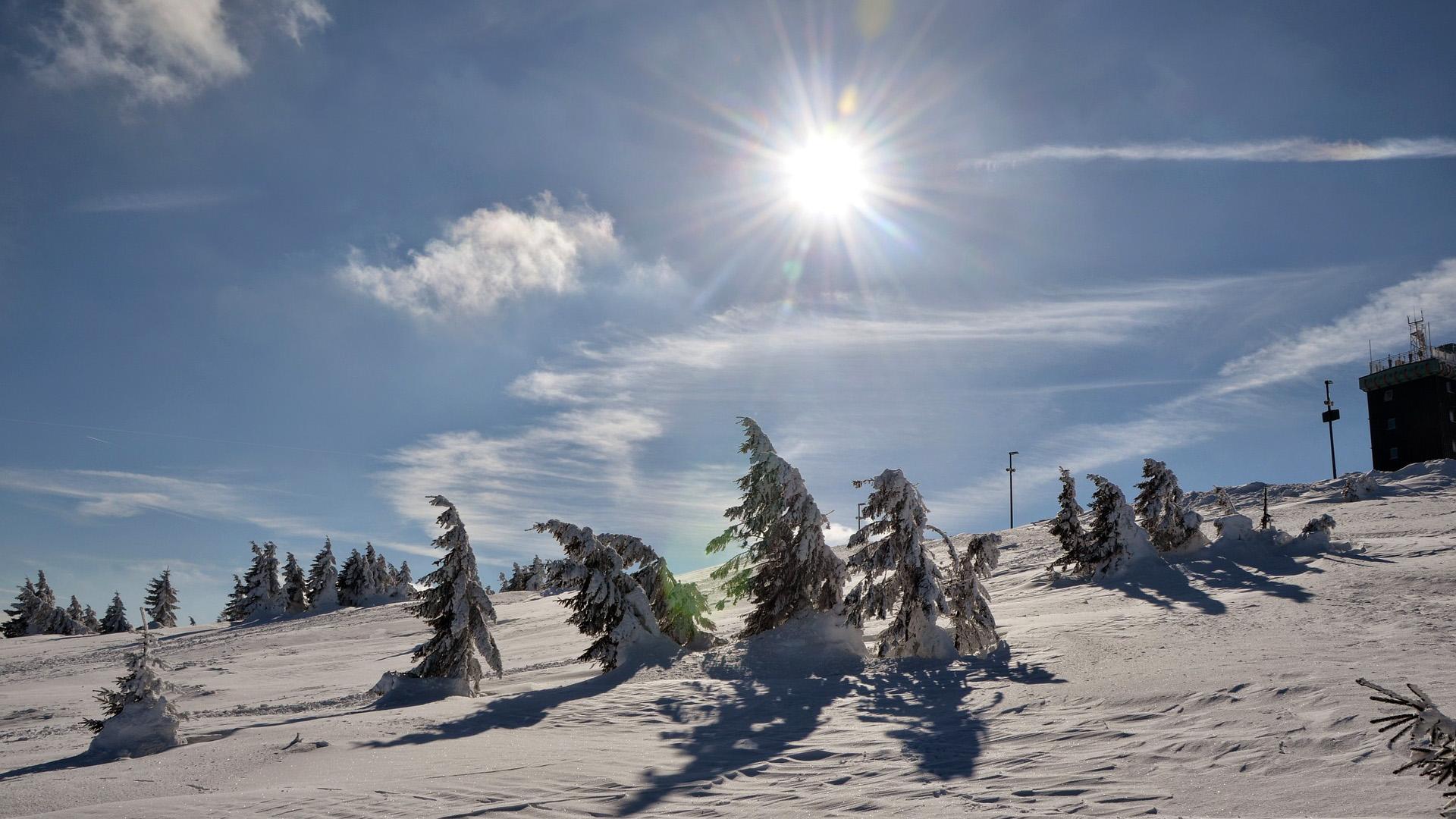 Blockhaus Bodefall - Winter - Bäume im Schnee